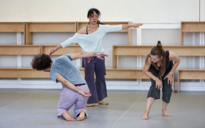 Independent Dance Seek An Administrator