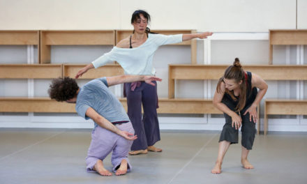 Independent Dance Seeks Co-Director