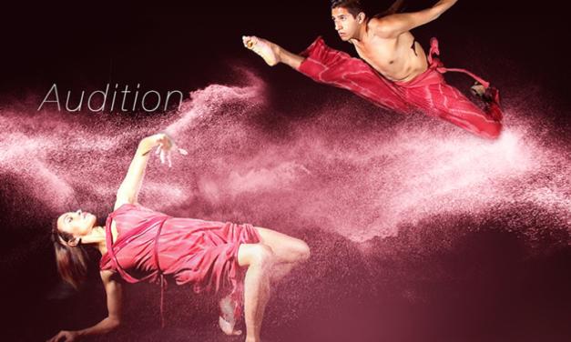 Audition Notice Donna Sternberg & Dancers