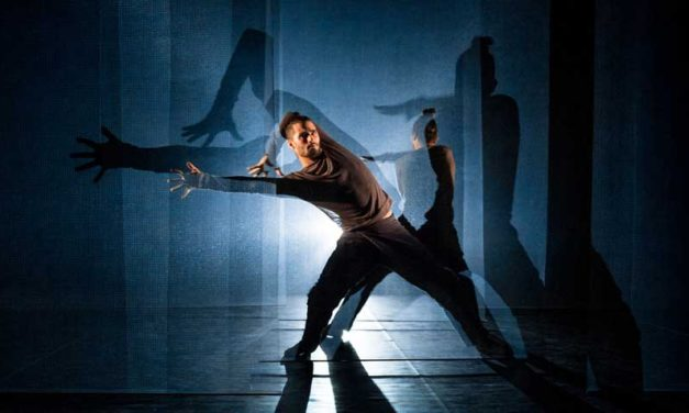 Audition Notice Compagnie Besprosvany