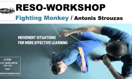 Reso-Workshop Fighting Monkey / Antonis Strouzas