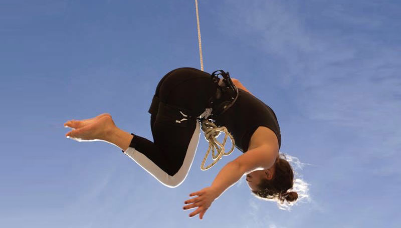 Apex Aerial Dance Call Out for Collaborators