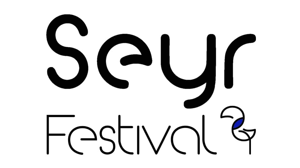 Open Call Seyr Festival of Screen-Movement and Media Arts