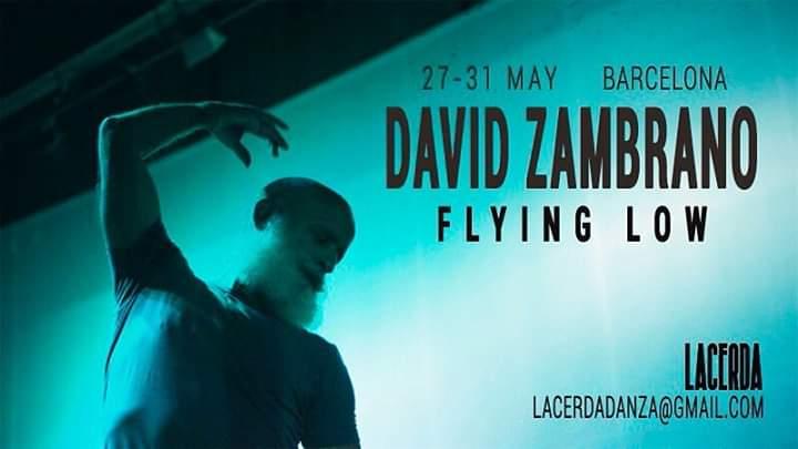 David Zambrano Flying Low Barcelona 2019
