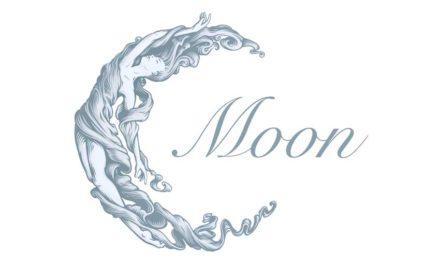 Theatre de la Lune Is Looking For Dancers