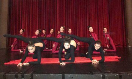 Contemporary SHADOWS Dance Theatre Rehearsal Director/Teaching Artist