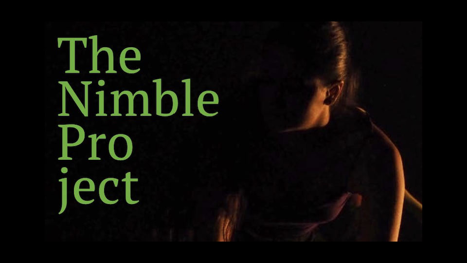 Nimble Project – Postgraduate Program