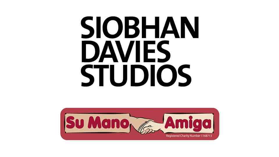 Su Mano Amiga Dance Artist Facilitator